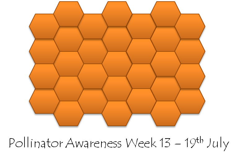 Polinator Awareness Week