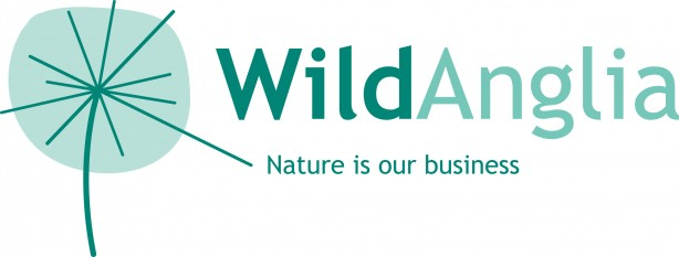 Wild Anglia logo_RGB