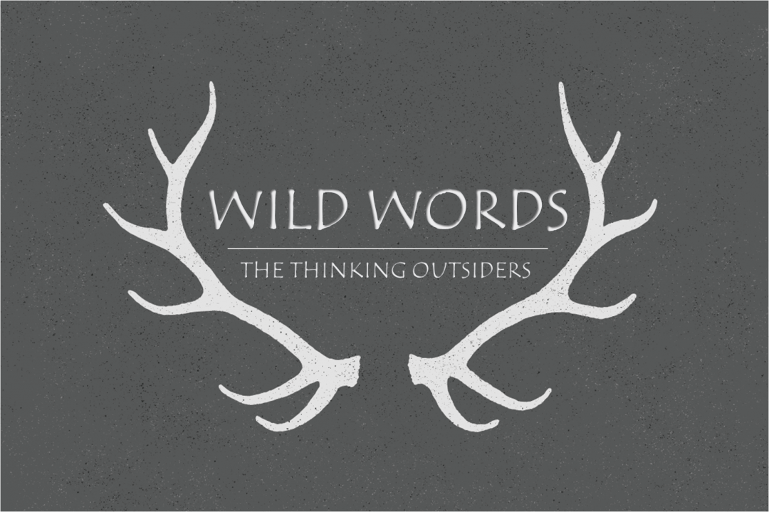 A new series of debates – WILD WORDS